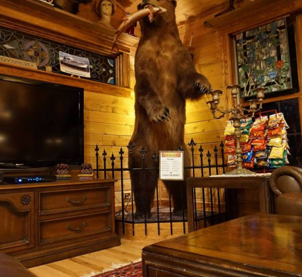 Unique places to stay in Wisconsin with kids, pets close to Wisconsin Dells cascade mountain lodging